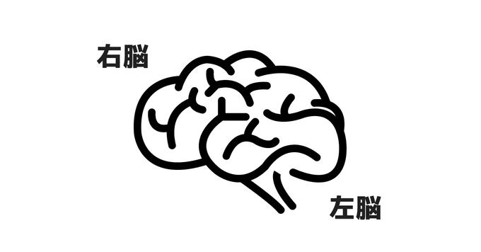 利き脳タイプ